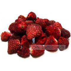 Клубника, ягода сушеная, высший сорт, 50 гр.