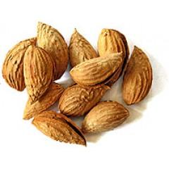 """Миндаль, орех в скорлупе, """"Бумажный"""", высший сорт, 100 гр."""