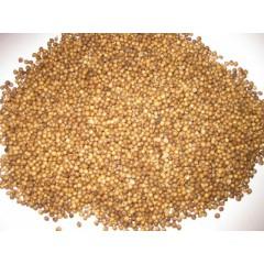 Кориандр семя, 100 гр.